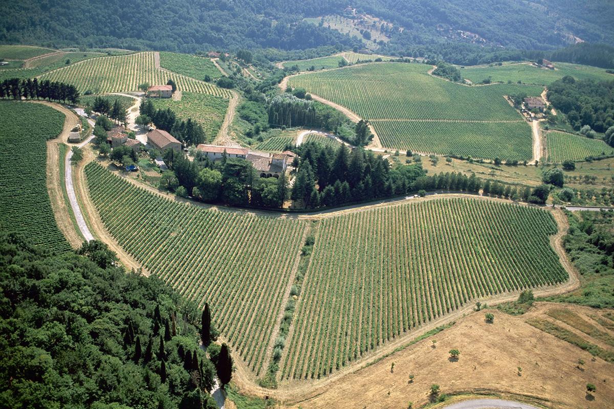 Tuscany - Pomino