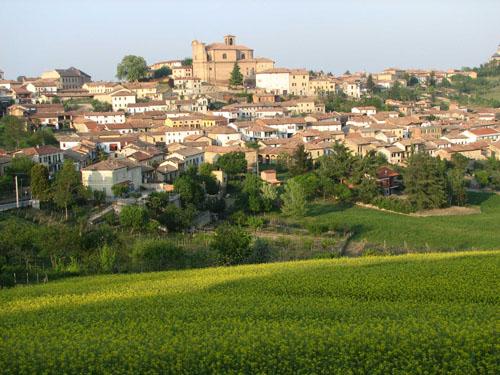 Piedmont - Malvasia di Casorzo