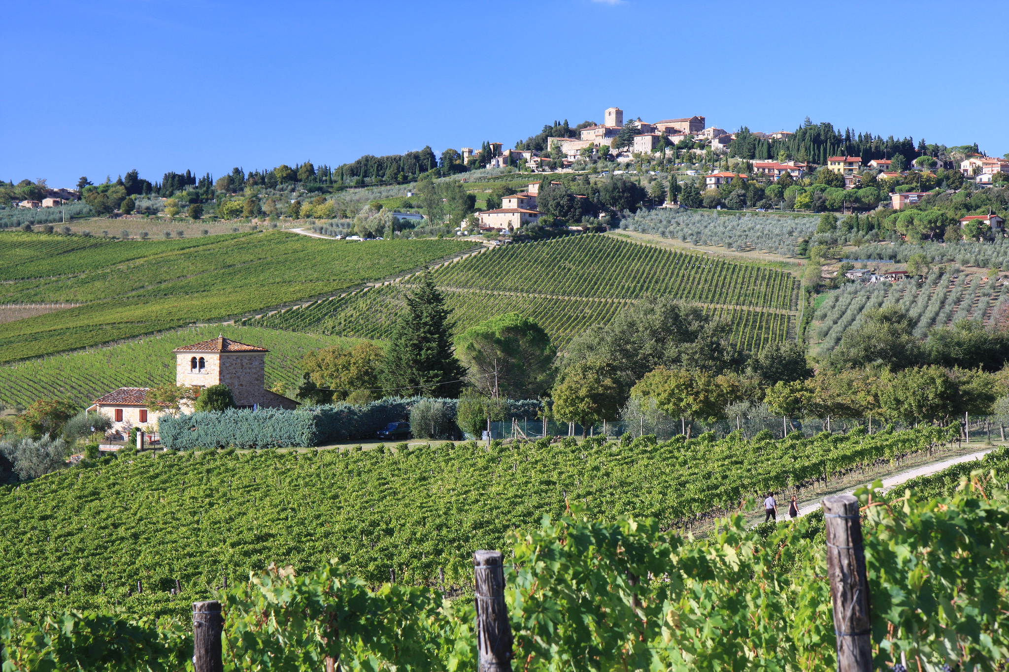 """Panzano looks over the """"conca d'oro"""" with Fontodi's vineyards omnipresent in the valley."""
