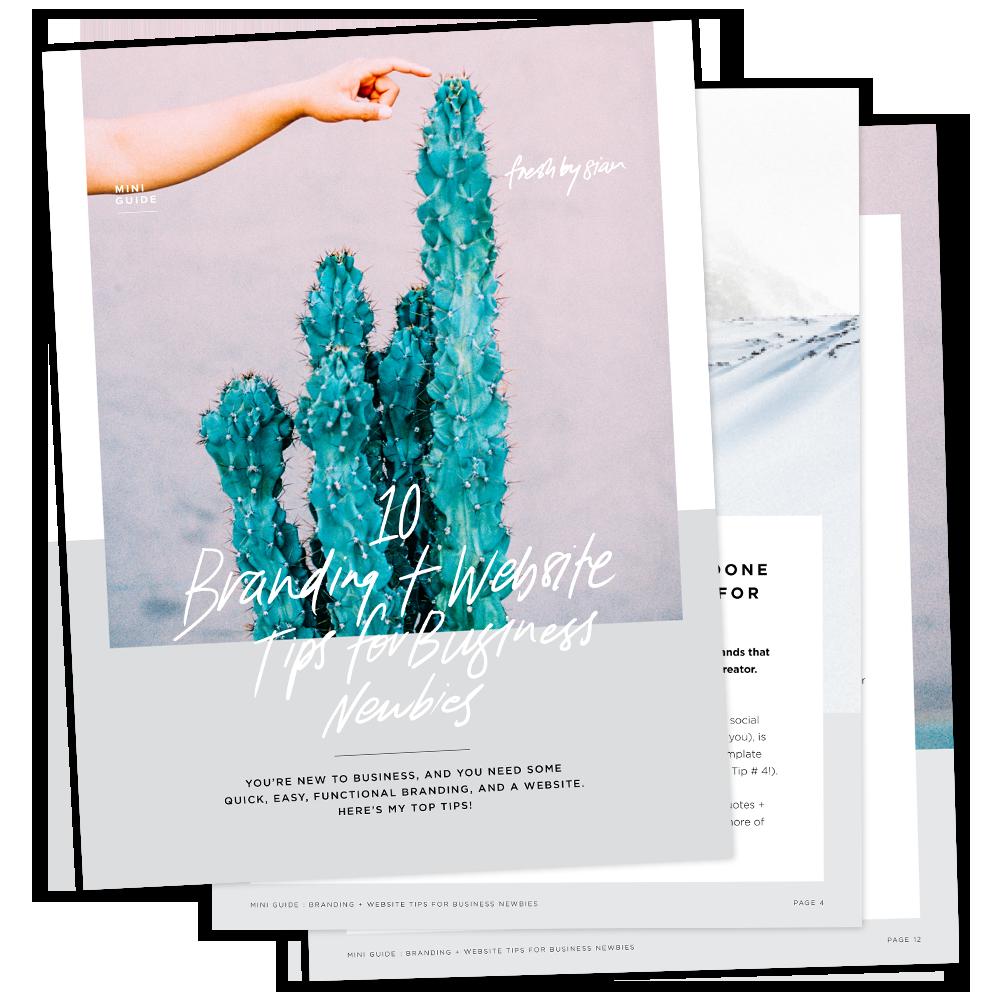 Branding + Website Tips for Business Newbies   Mini-Guide