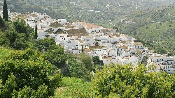 Málaga Countryside - Peaceful luxury