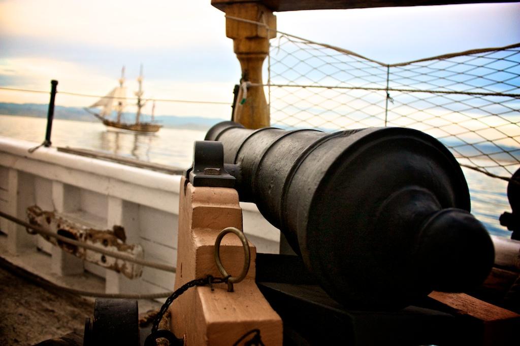 Cannon (1).jpg