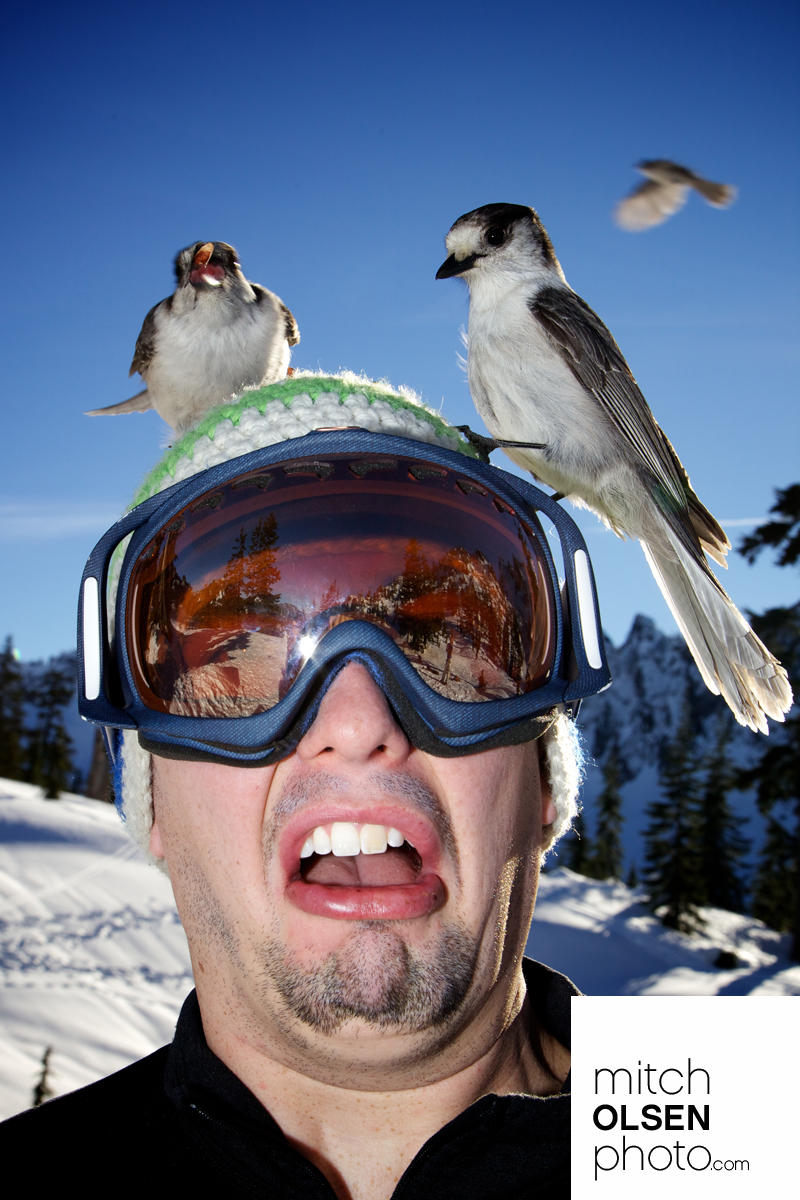 Snowlake-33.jpg
