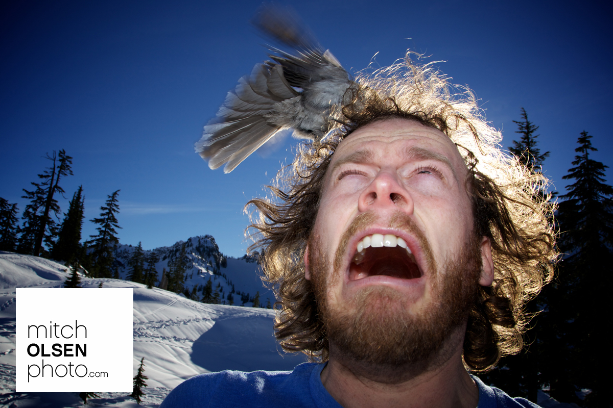 Snowlake-40.jpg