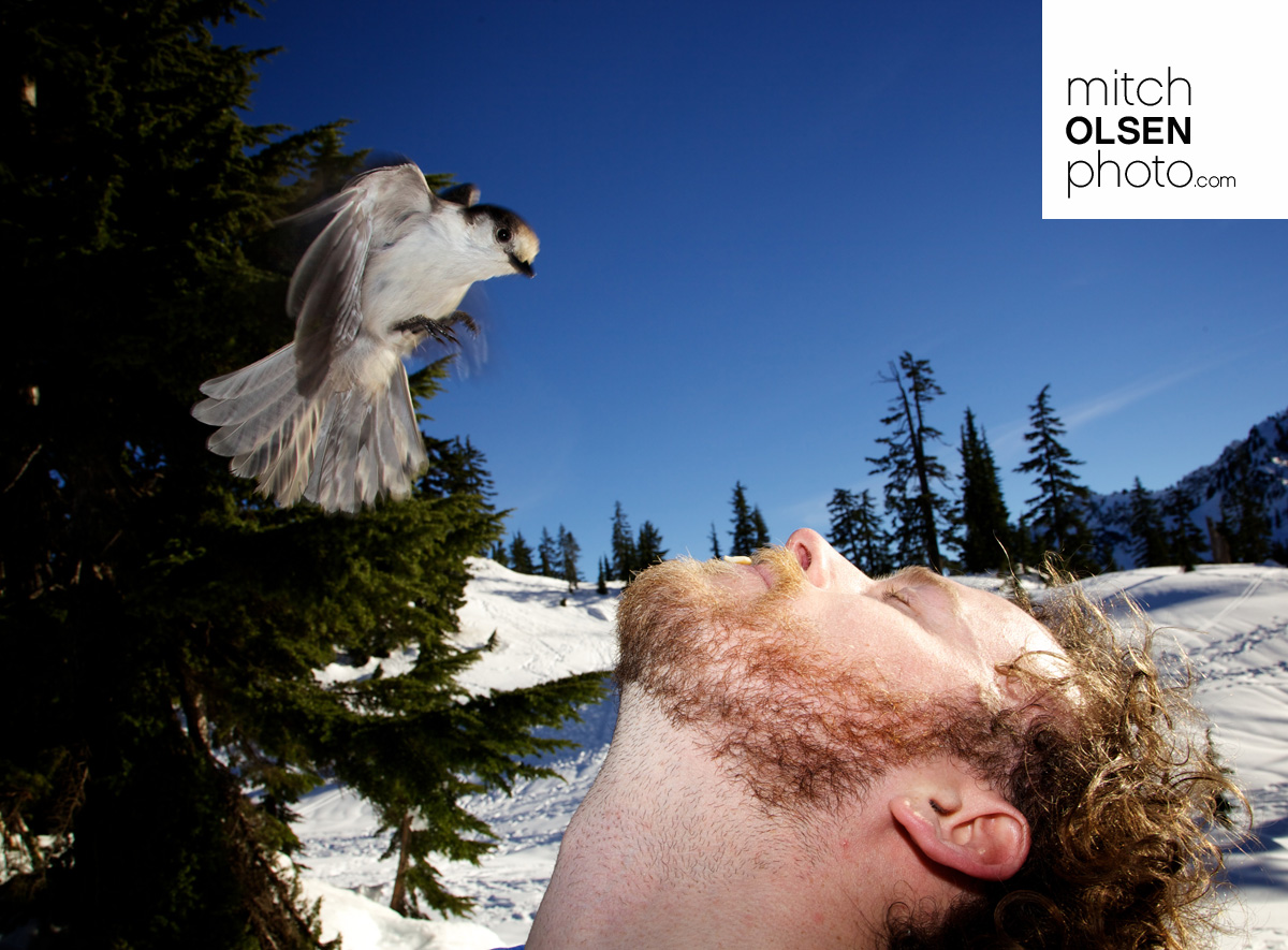 Snowlake-43.jpg