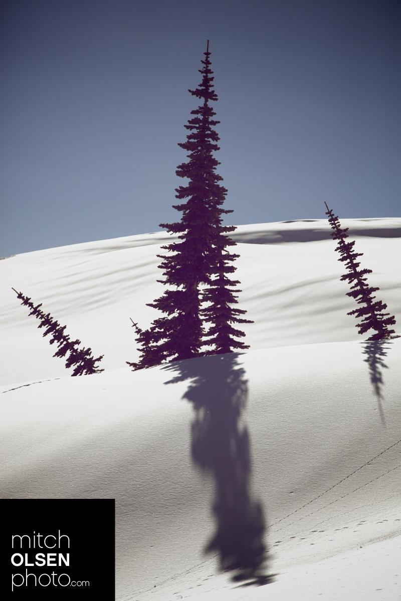 SnowCamp-45.jpg
