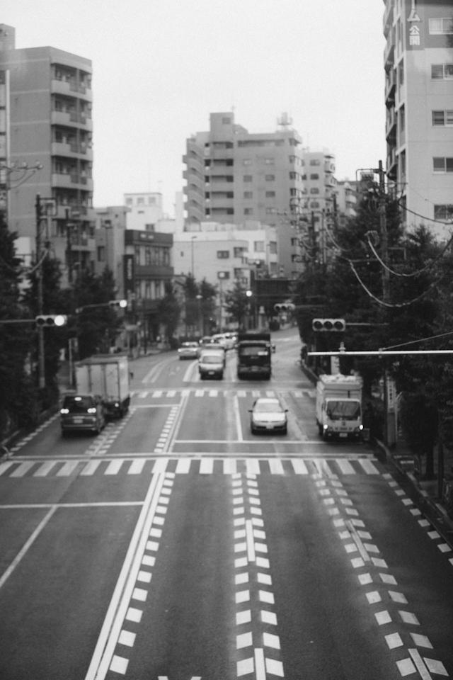 Tokyo&Zoo-293.jpg