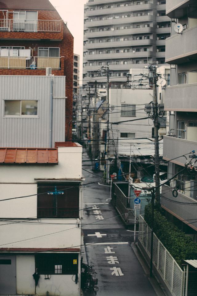 Tokyo&Zoo-292.jpg