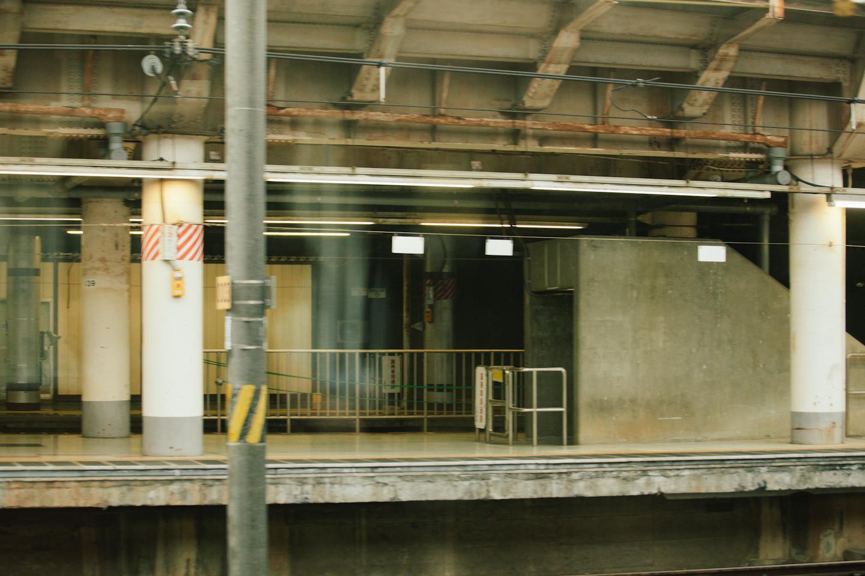 Tokyo&Zoo-286.jpg