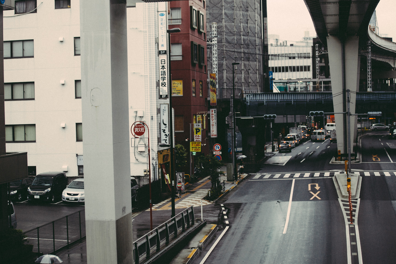Tokyo&Zoo-288.jpg