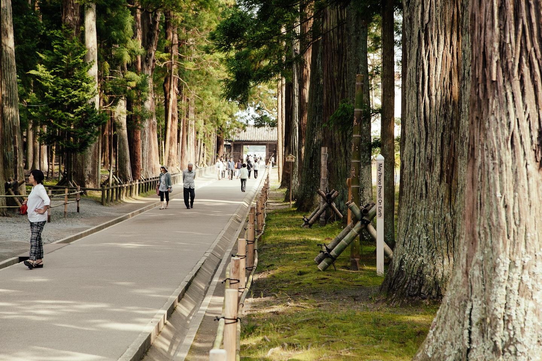 Japan-266.jpg