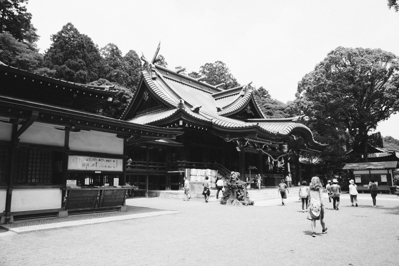 Tokyo&Zoo-335.jpg
