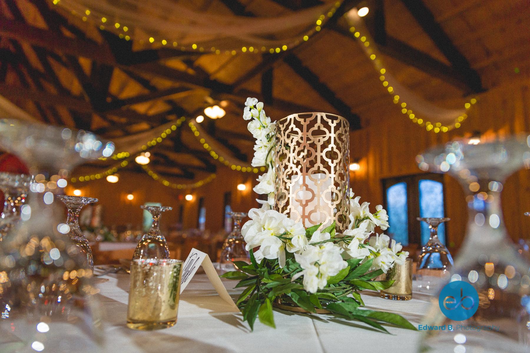 indian-wedding-engagement-reception-san-antonio-austin-texas-10.jpg