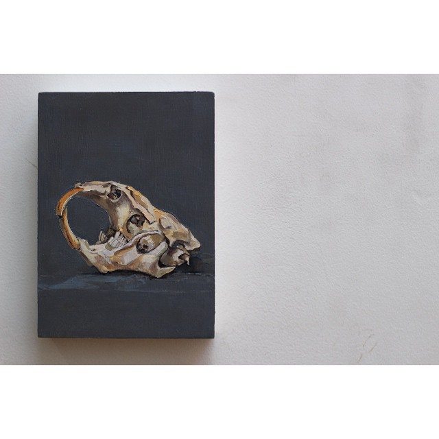 "Muskrat, 7.5""x5"", Oil on Panel. #gallery #muskrat #oilonpanel #oilpainting #skull #fineart #instaart #newartwork #Brooklyn #greenpoint #easel #paint #gray #bones #animalpainting #portrait (at Studio 18)"