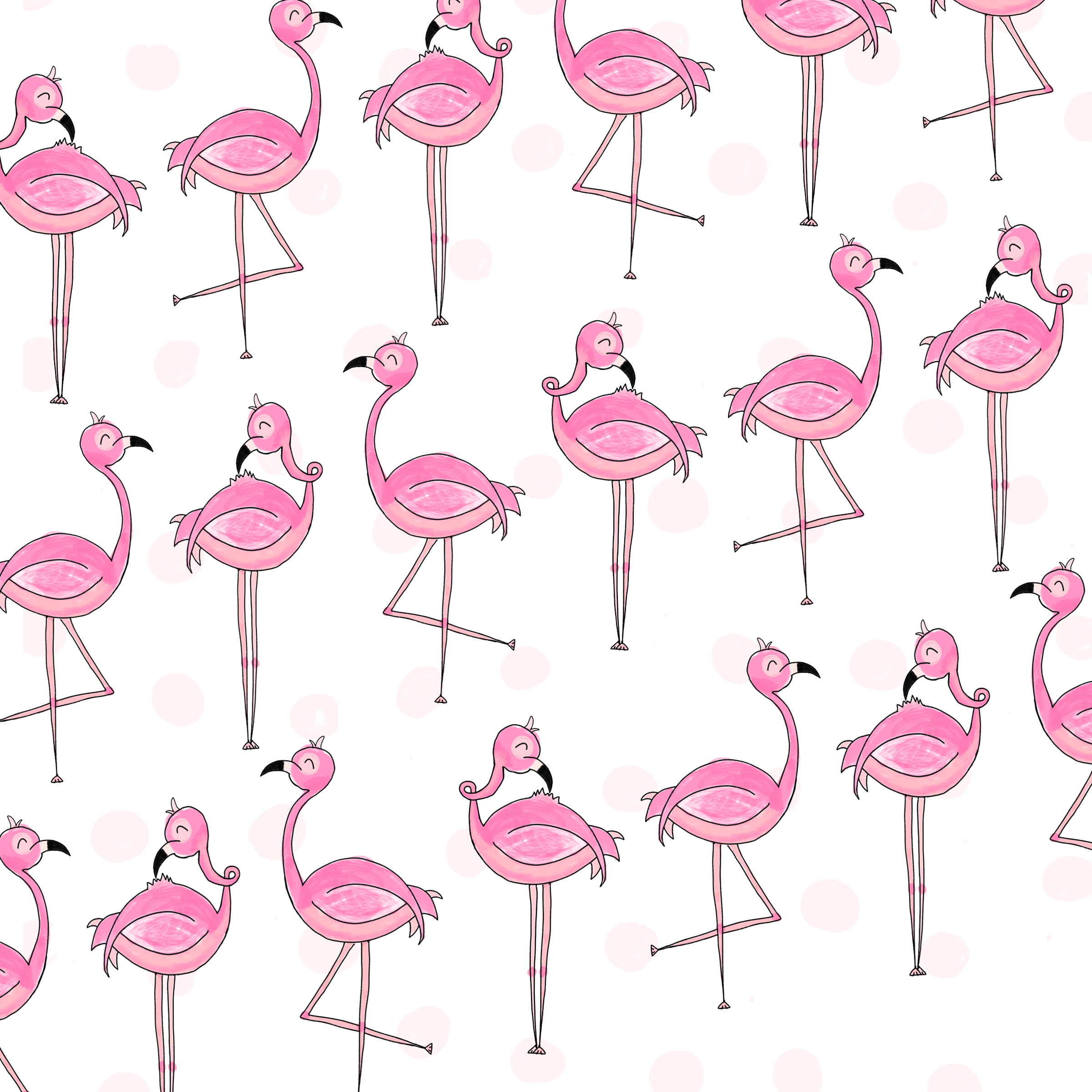 flamingoes.png