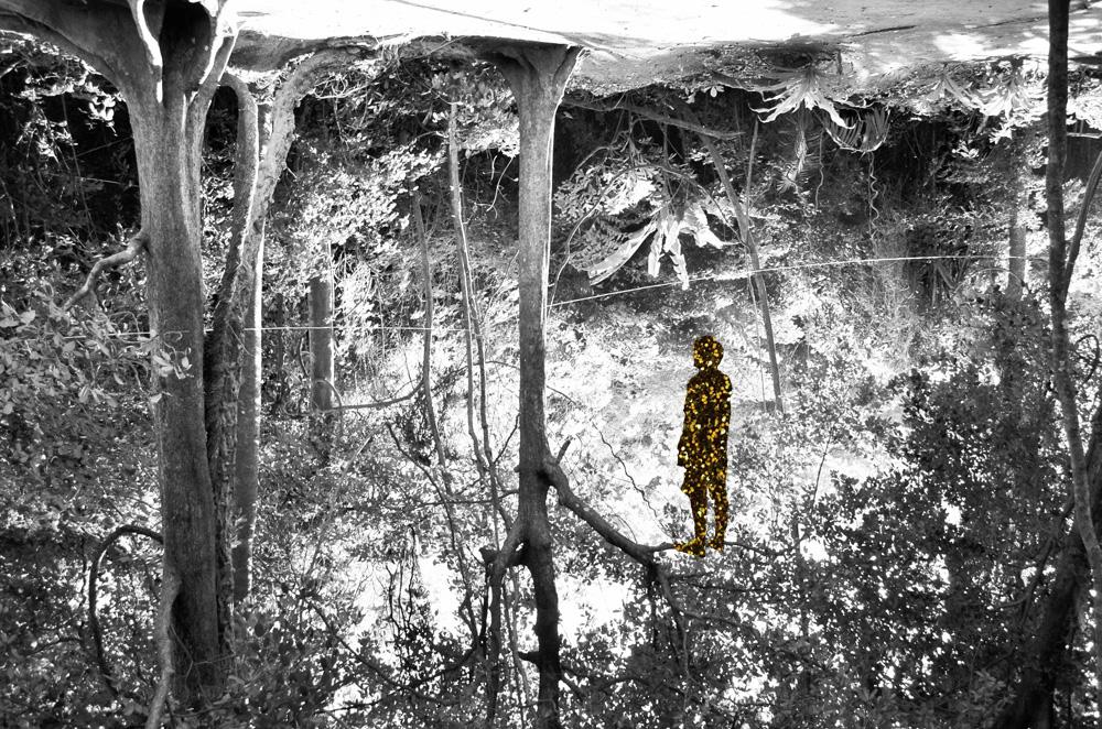 Glitter Boy on the tree.
