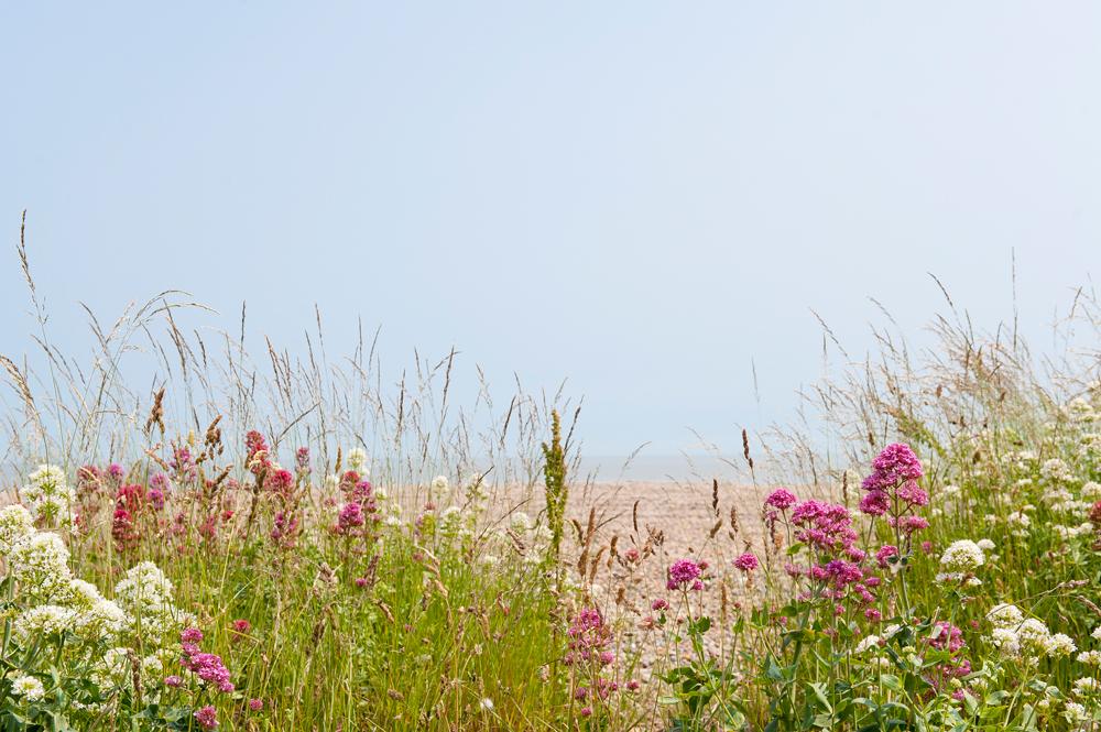 Aldeburgh5.jpg