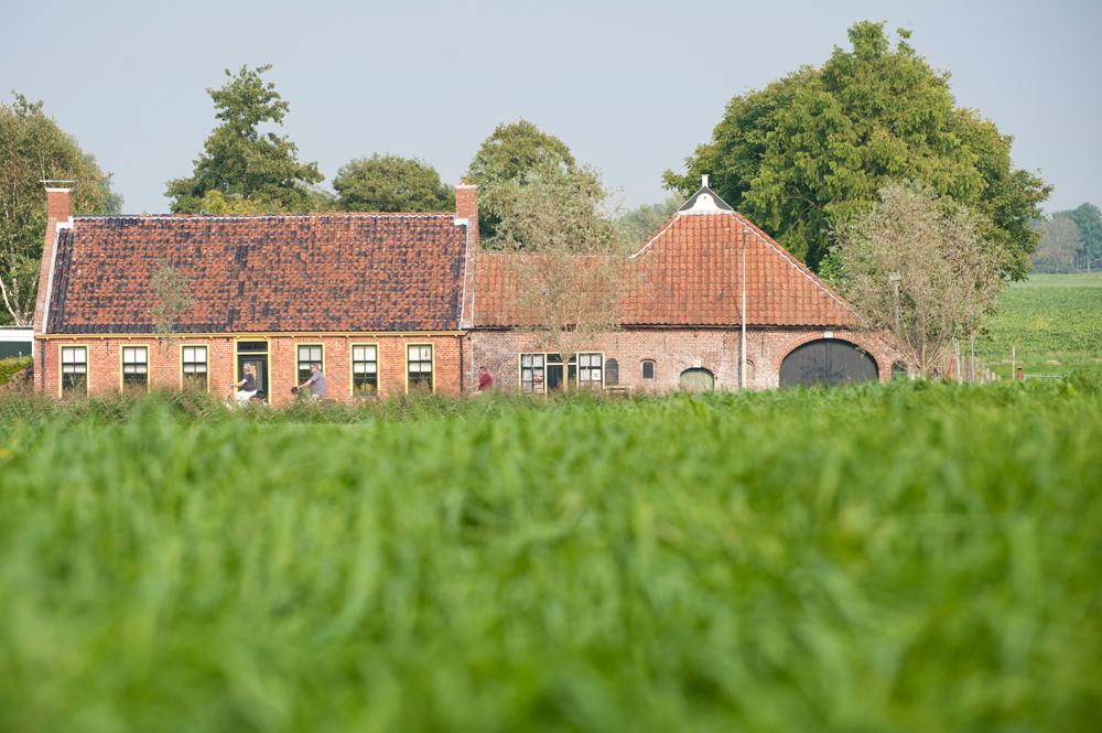 Groningen9.jpg