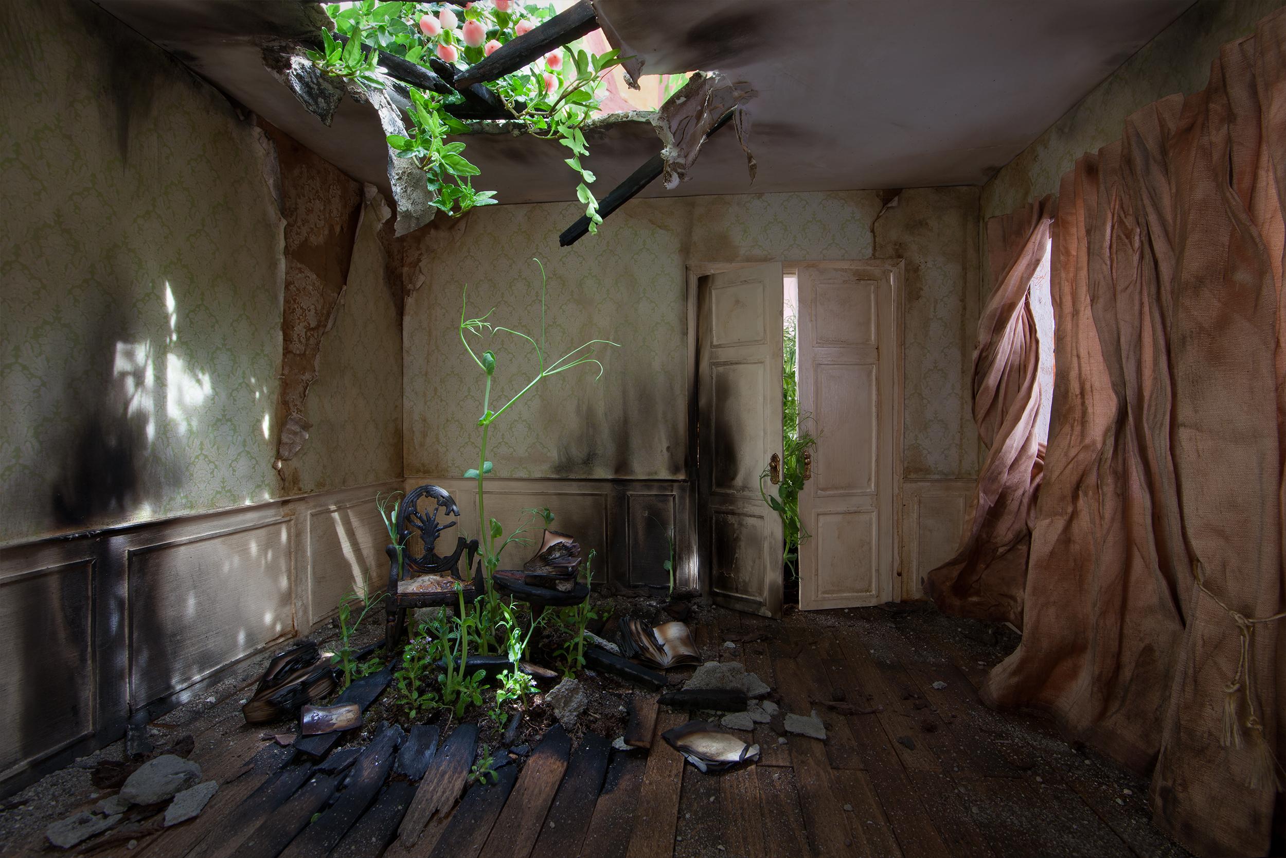 Green Room  2015, 93 x 140 cm