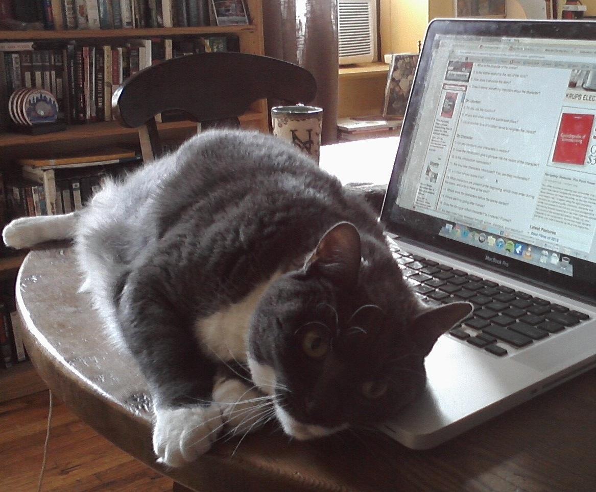 This procrastination-aid is named Neko.