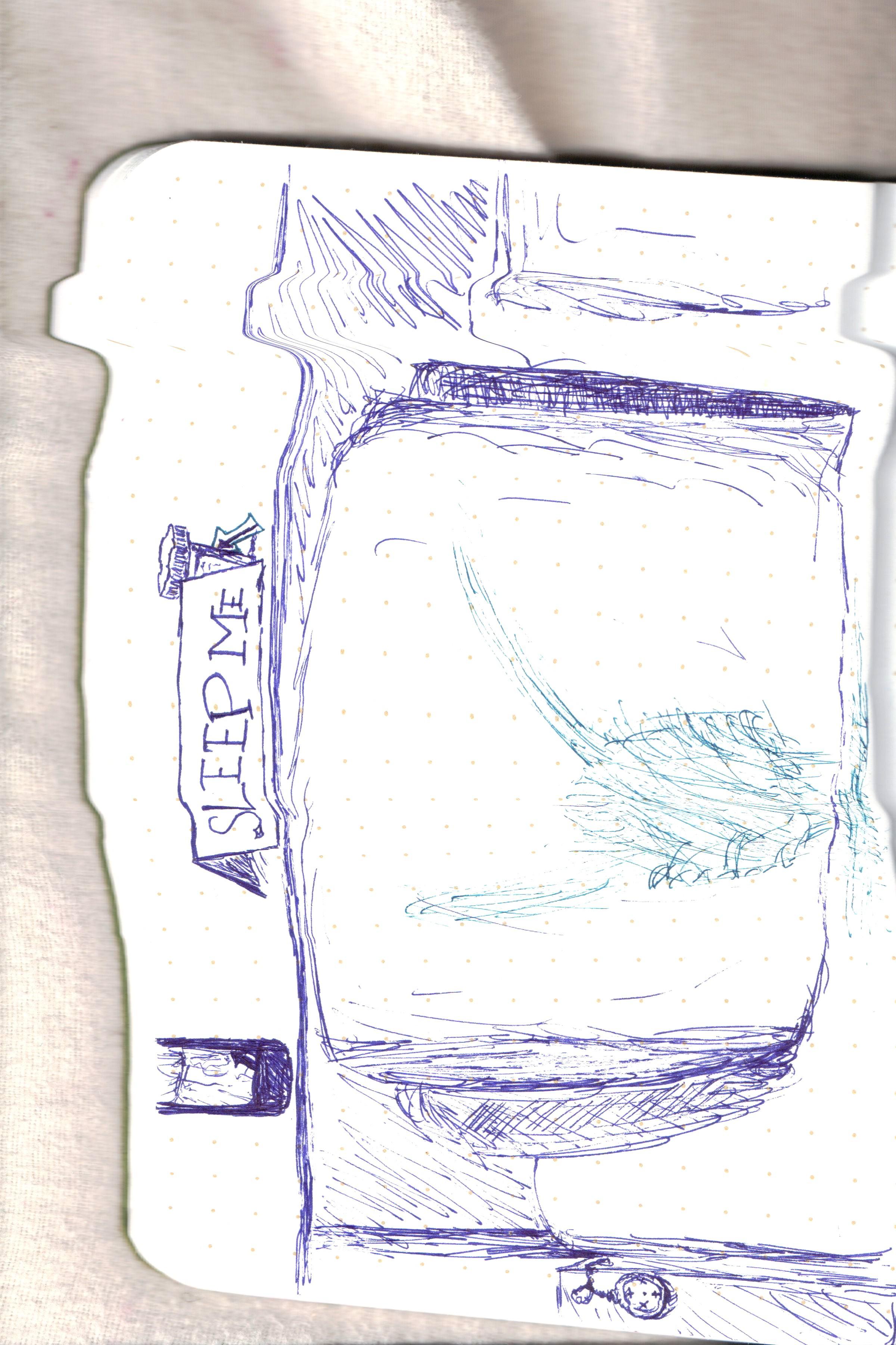Pacer on Quipkenstein 48.jpg