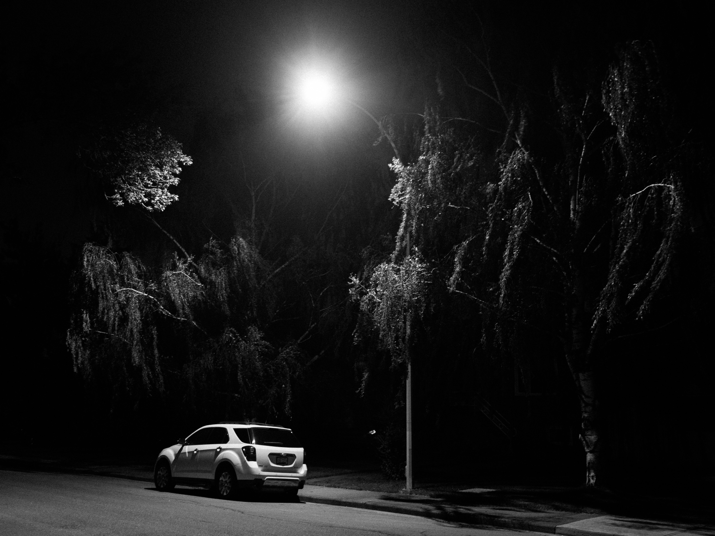 I was happy with the simplified subject matter of this photo. It's a photo of willows, a streetlight, and a car. I always wonder how photos with contemporary cars will age though. Will these cars look classic in a few decades?