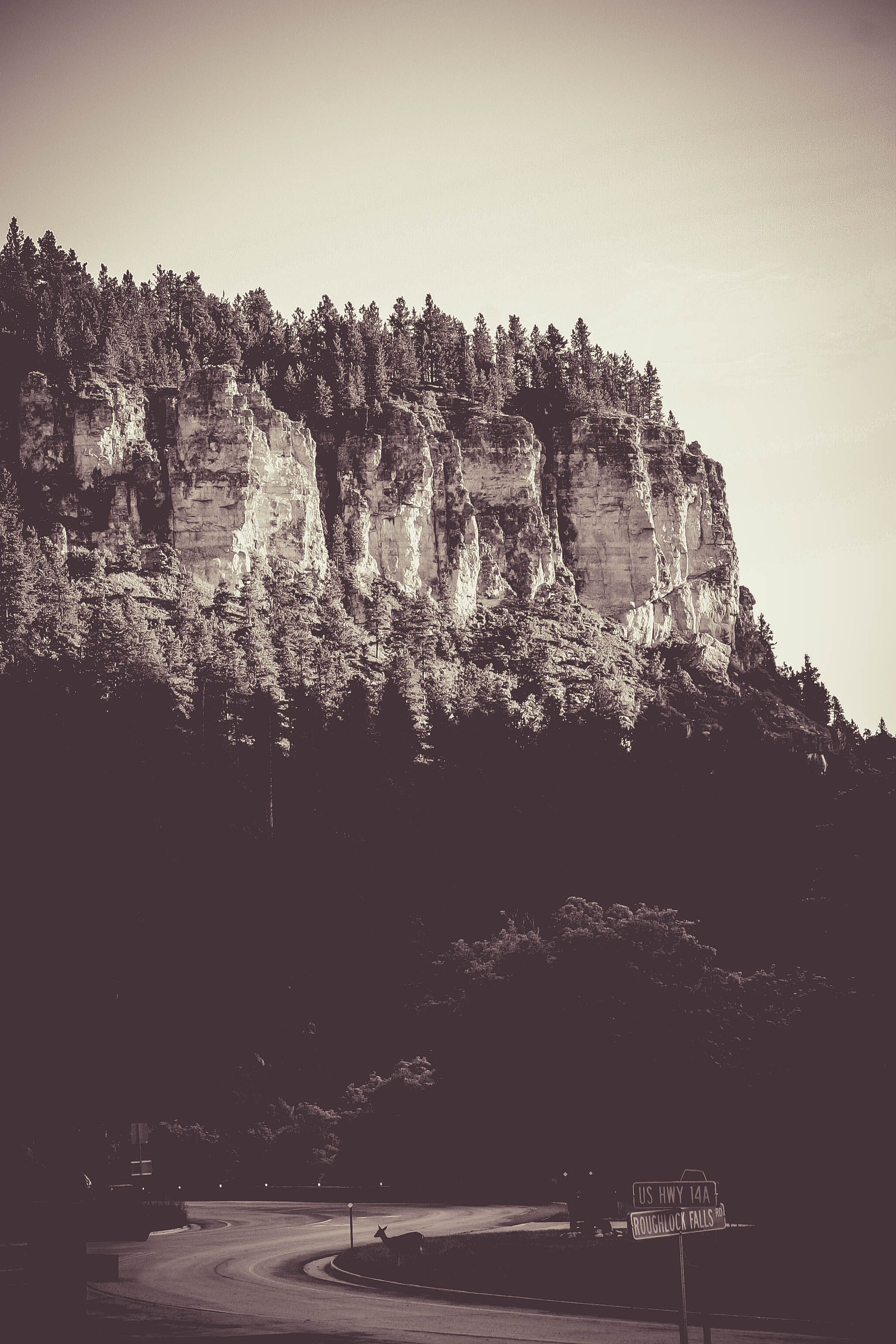 Spearfish Canyon, Black Hills, SD