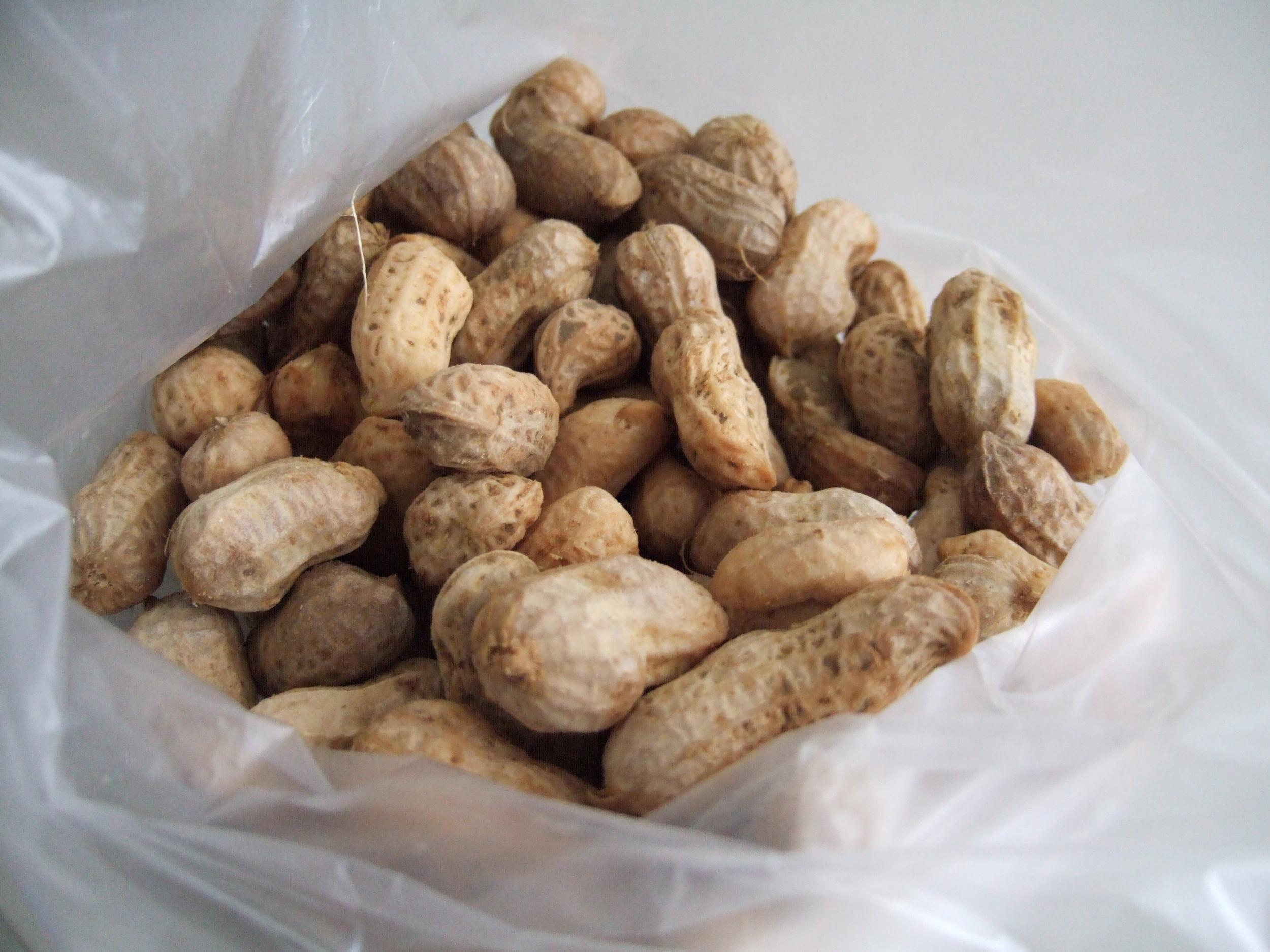 Boiled Peanuts.JPG