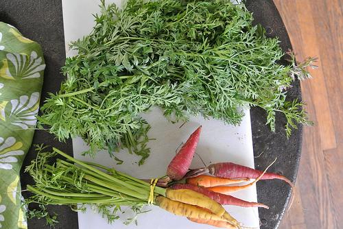 carrot greens table.jpg