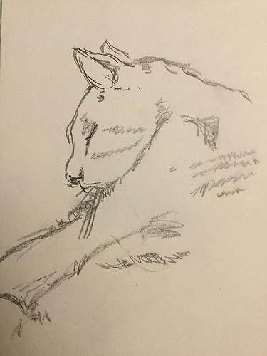 portrait of Herman by Matthew Everett