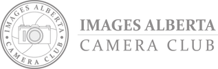 iacc-all-logos-word-mark-main-transparent_7.png