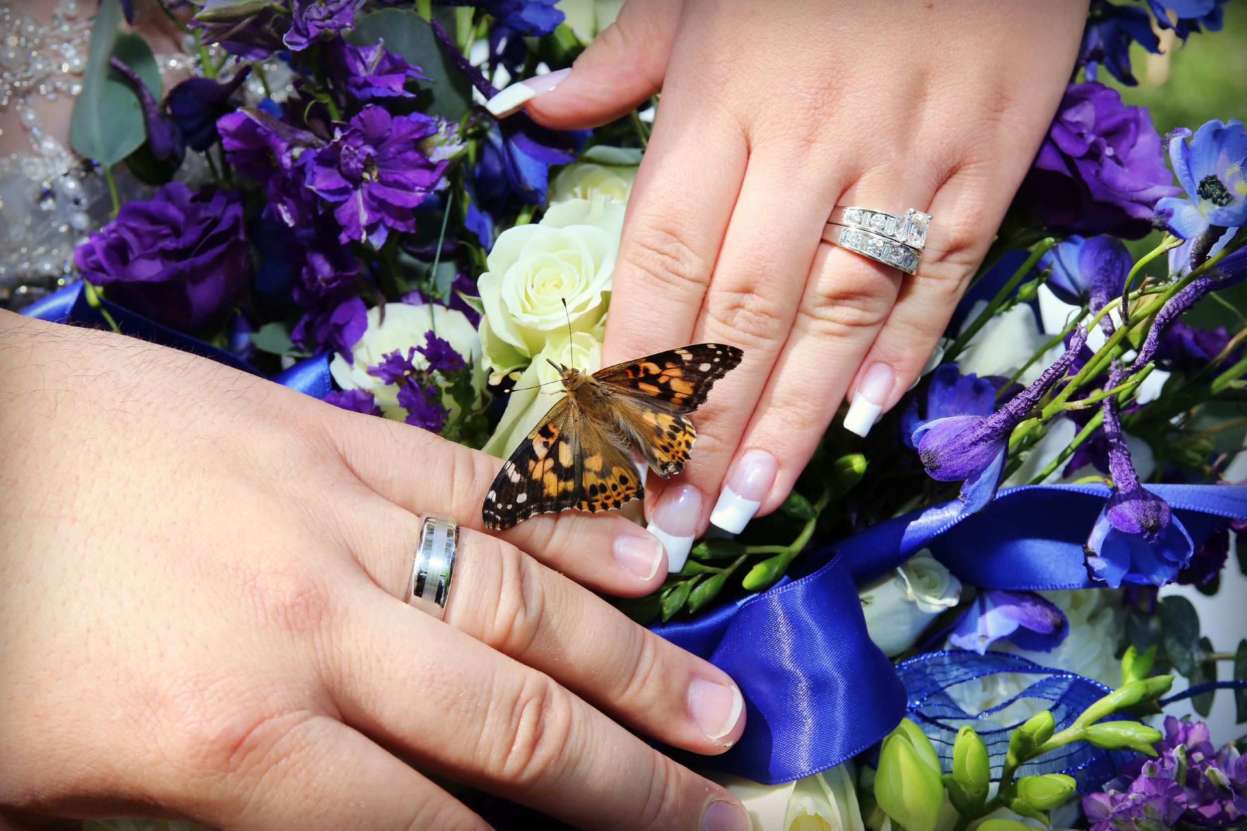 Bountiful Artistic Wedding photography