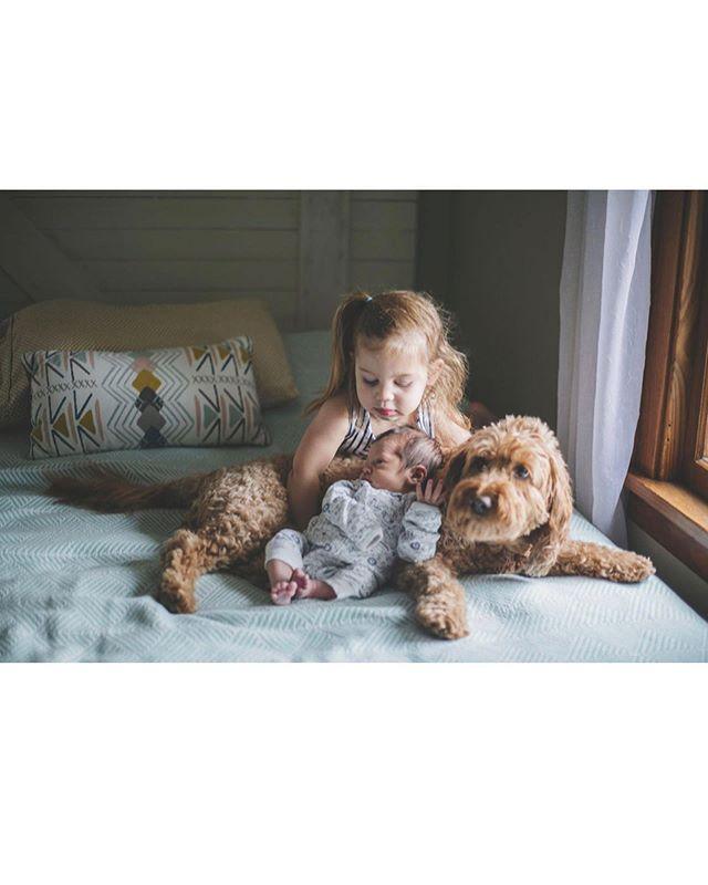 Sweet brother-sister moments 💕 #robertarae #robertaraephotography #wisconsinphotographer #familyphotographer #ozaukeephotographer #milwaukeelifestylephotographer