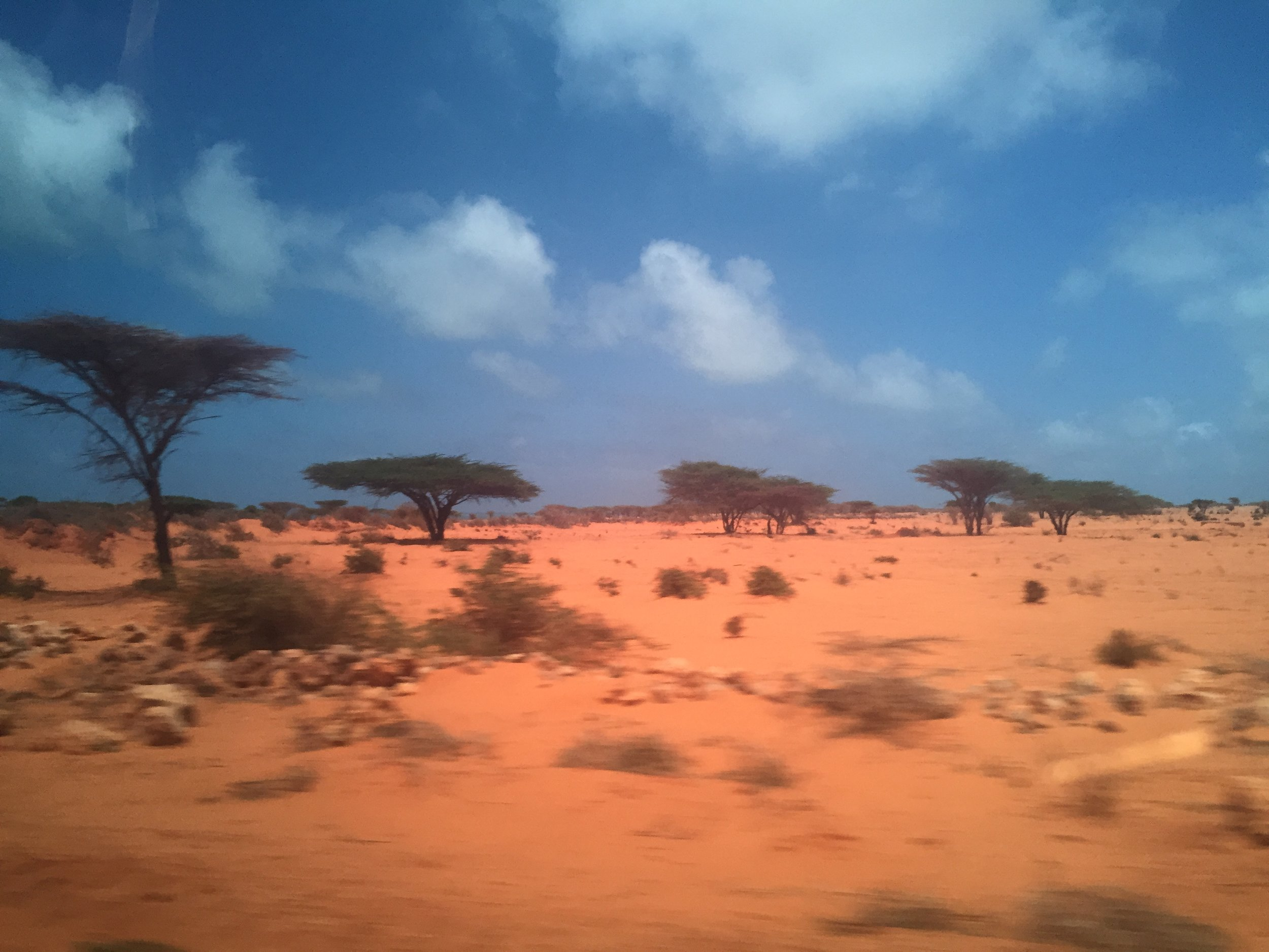 Landscape on the outskirts of Kismayo. The last harvest was well below average and with the potential poor rainfall due to La Nina, drought conditions are expected. The climate conditions in Somalia cause a challenge for former agro-pastoralists returning from Dadaab to re-establish to their previous livelihoods.