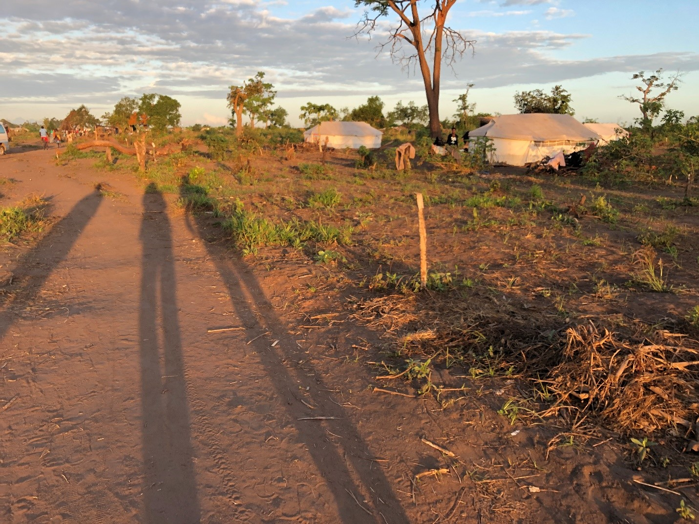 Guara Guara resettlement site in central Mozambique. This is government identified land where people who lost their homes are trying to restart their lives.