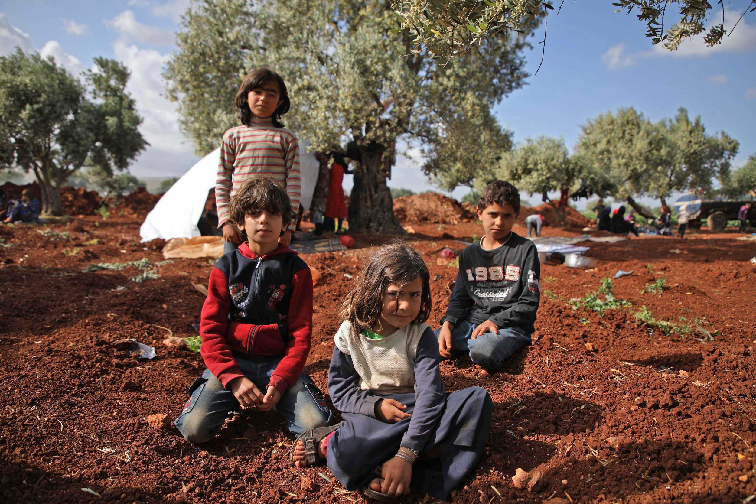 Displaced Syrian children living in an olive grove in Atme, Syria. Photo Credit: AAREF WATAD/AFP/Getty Images.