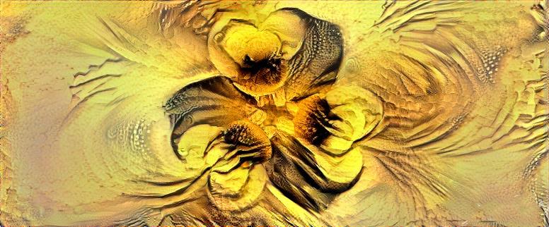 DesertFlower.jpg