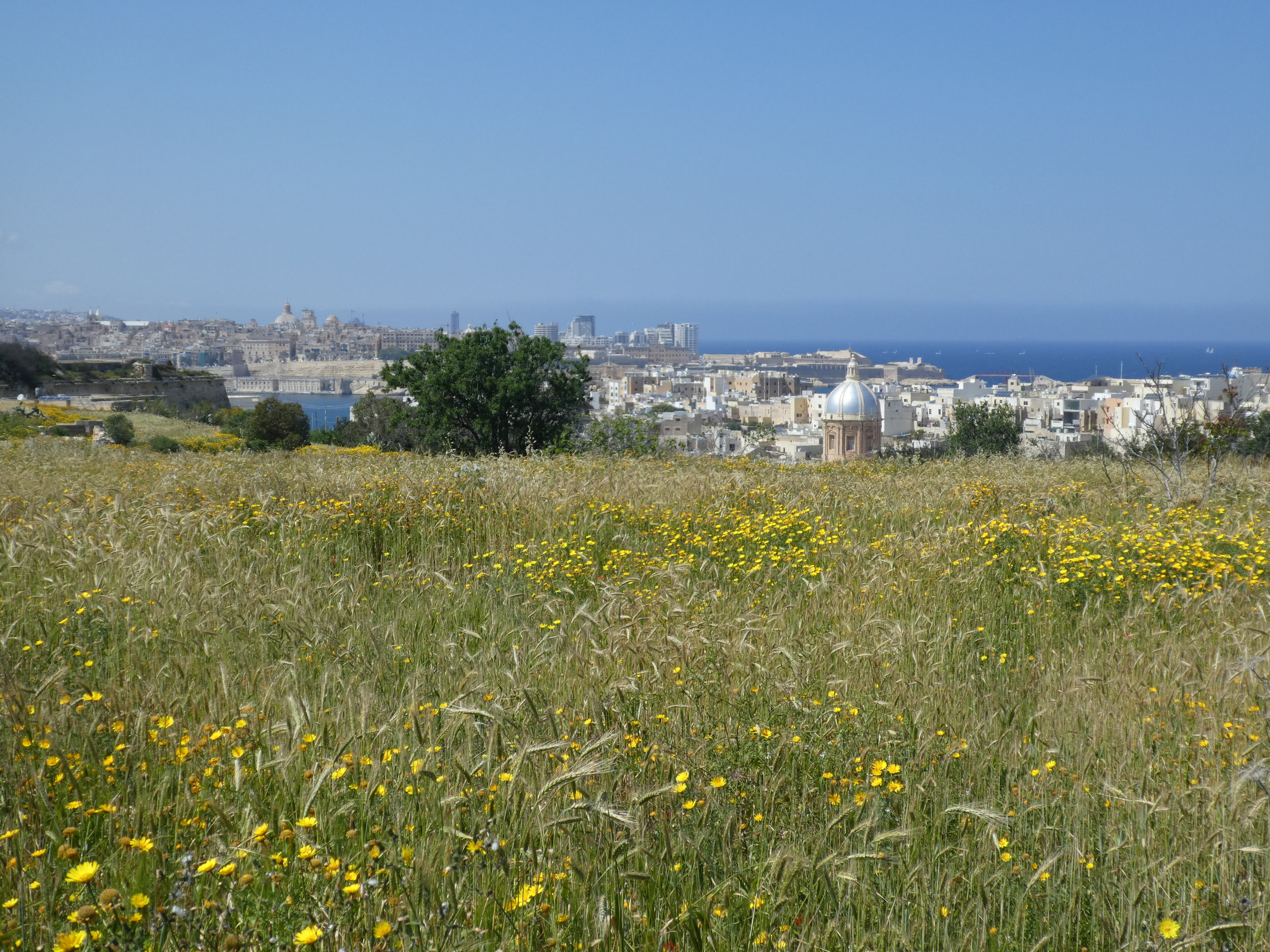 View on Kalkara and Valletta from the South.