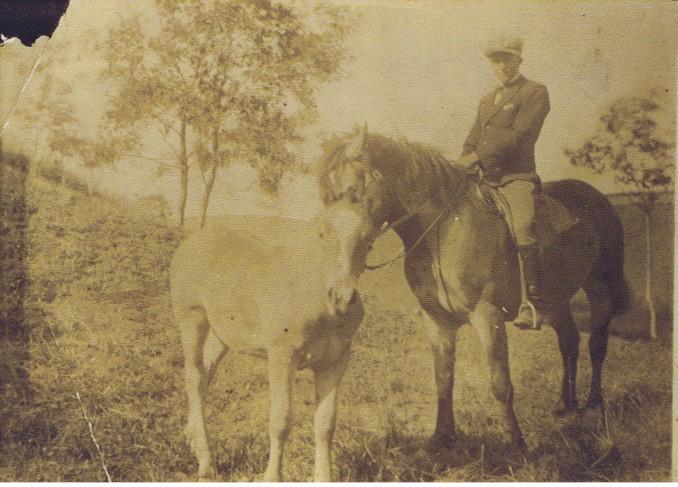 Anton Siegmund with his Trakehner horses