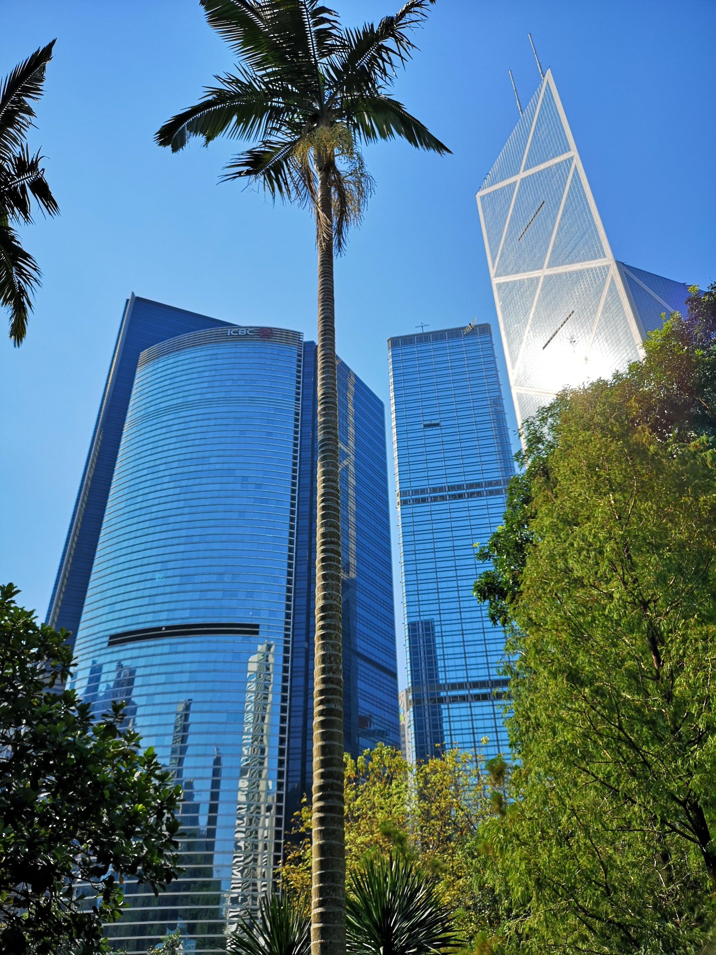 Hong Kong Park view