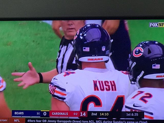 Suddenly into football again? ____________ ____________ ____________ #nfl #kush #420 #whaddup #dank #chief #herbalessences #herb #chill #chillherb