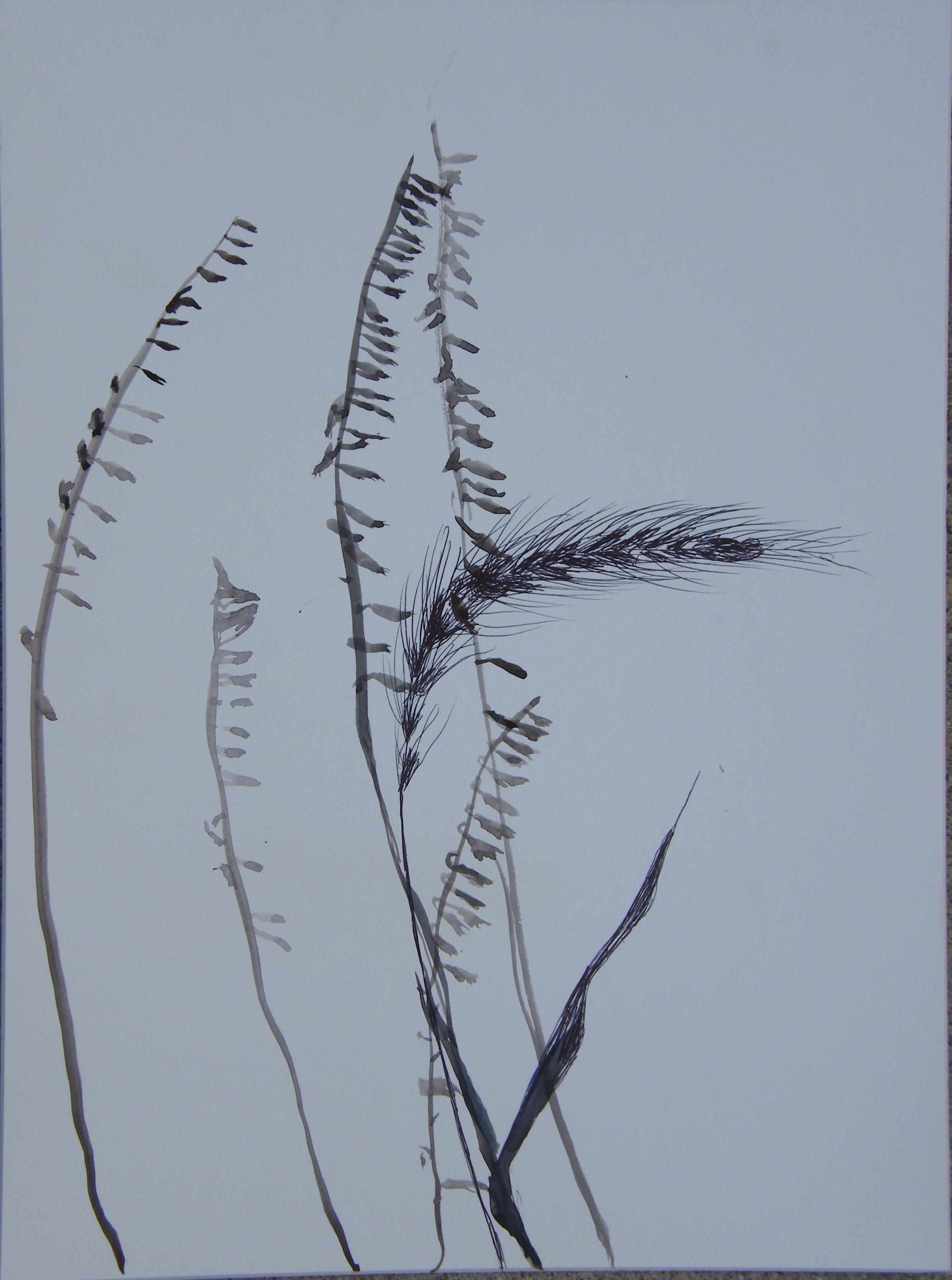 Silhouette painting/drawing, restored prairie