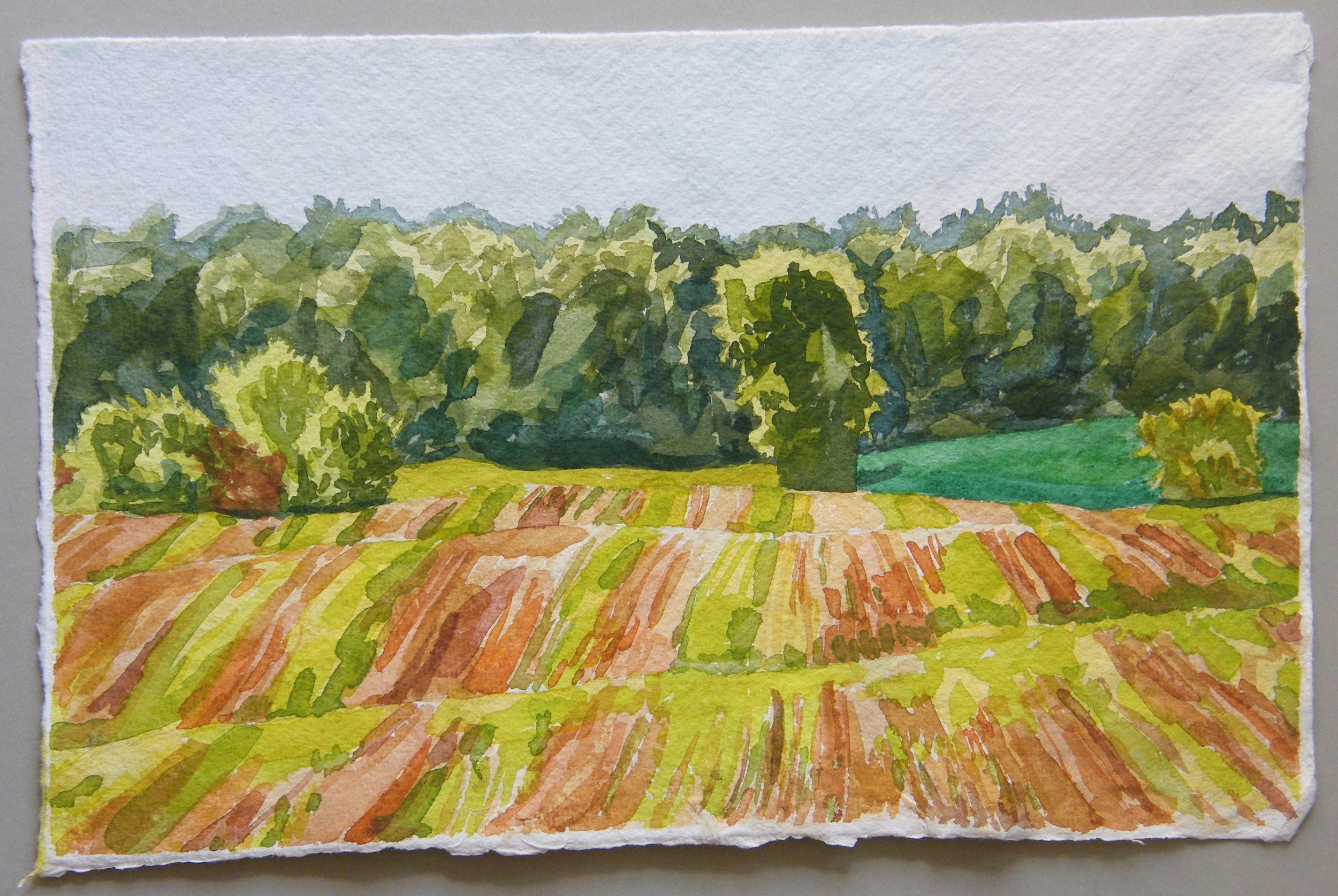 Done! Waterworks Road, Early Fall 2. This piece is on Indian Village handmade watercolor paper.  Each of the finished paintings here are on different papers and that affects the colors and the way the papers handle the paint.  I love painting on 2 different kinds of paper to keep in interesting and challenging for me.