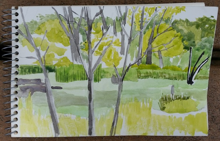 marsh in progress, 1