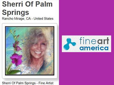 Sherri Of Palm Springs Fine Art - Shopping