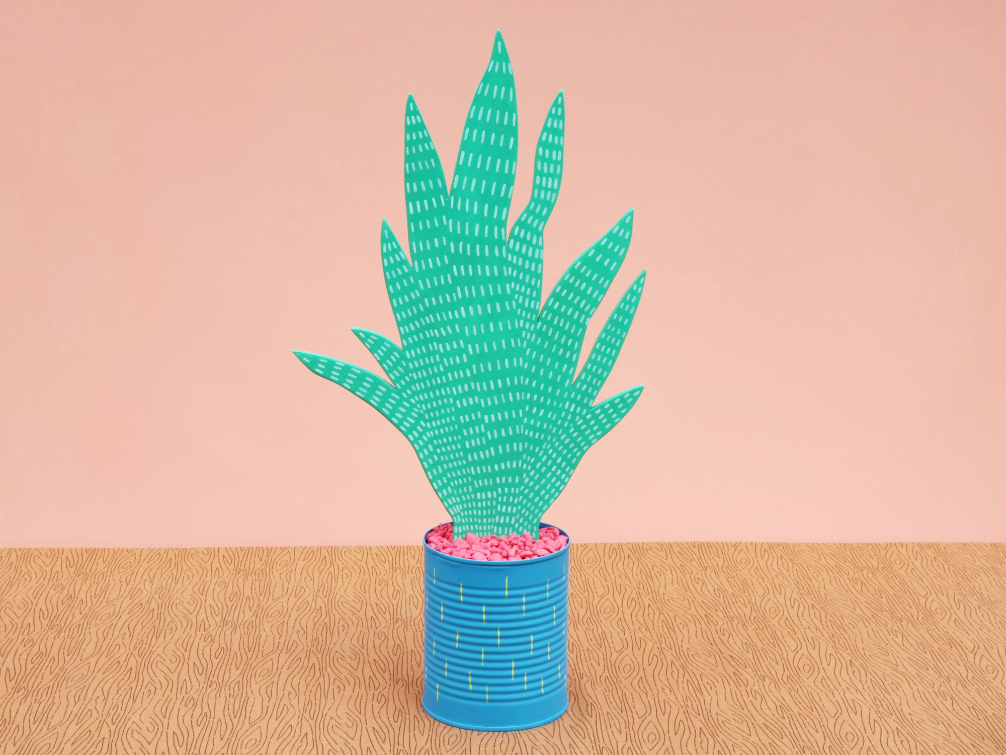 cactiE_front.png