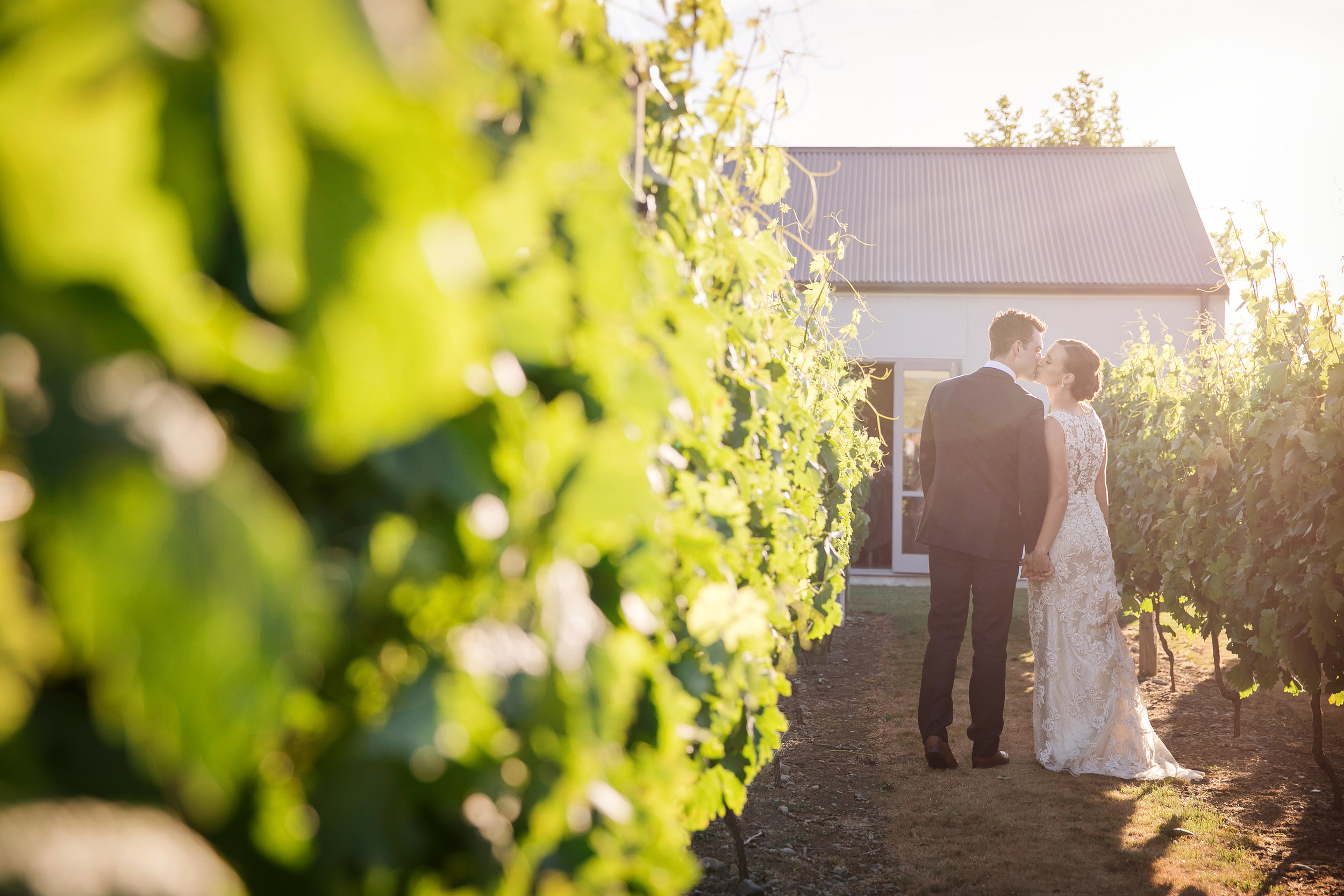 Martinborough-Poppies-Wedding-Caine-Eloise-Toni-Larsen-0116.jpg