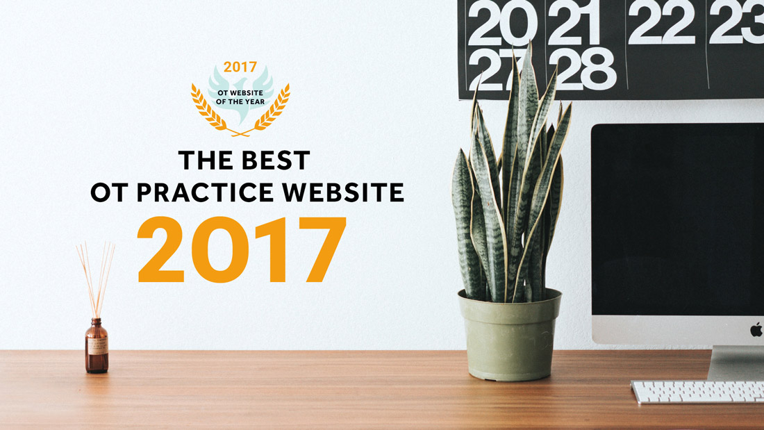 Click here to find the OT practice websites that were voted best of 2017!
