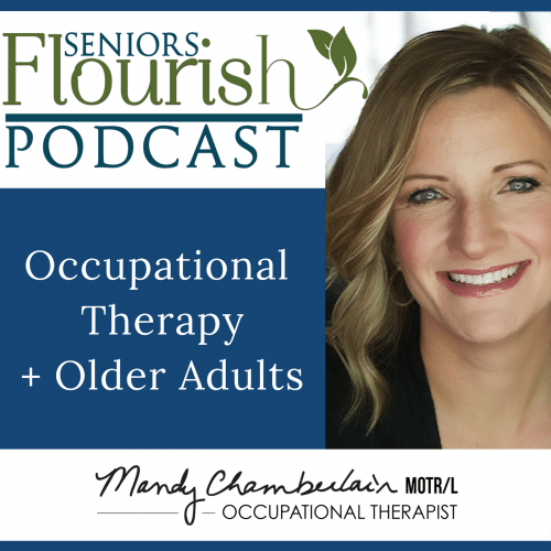 Here Mandy Chamberlain, Meredith Castin and I  talk non-traditional OT jobs .