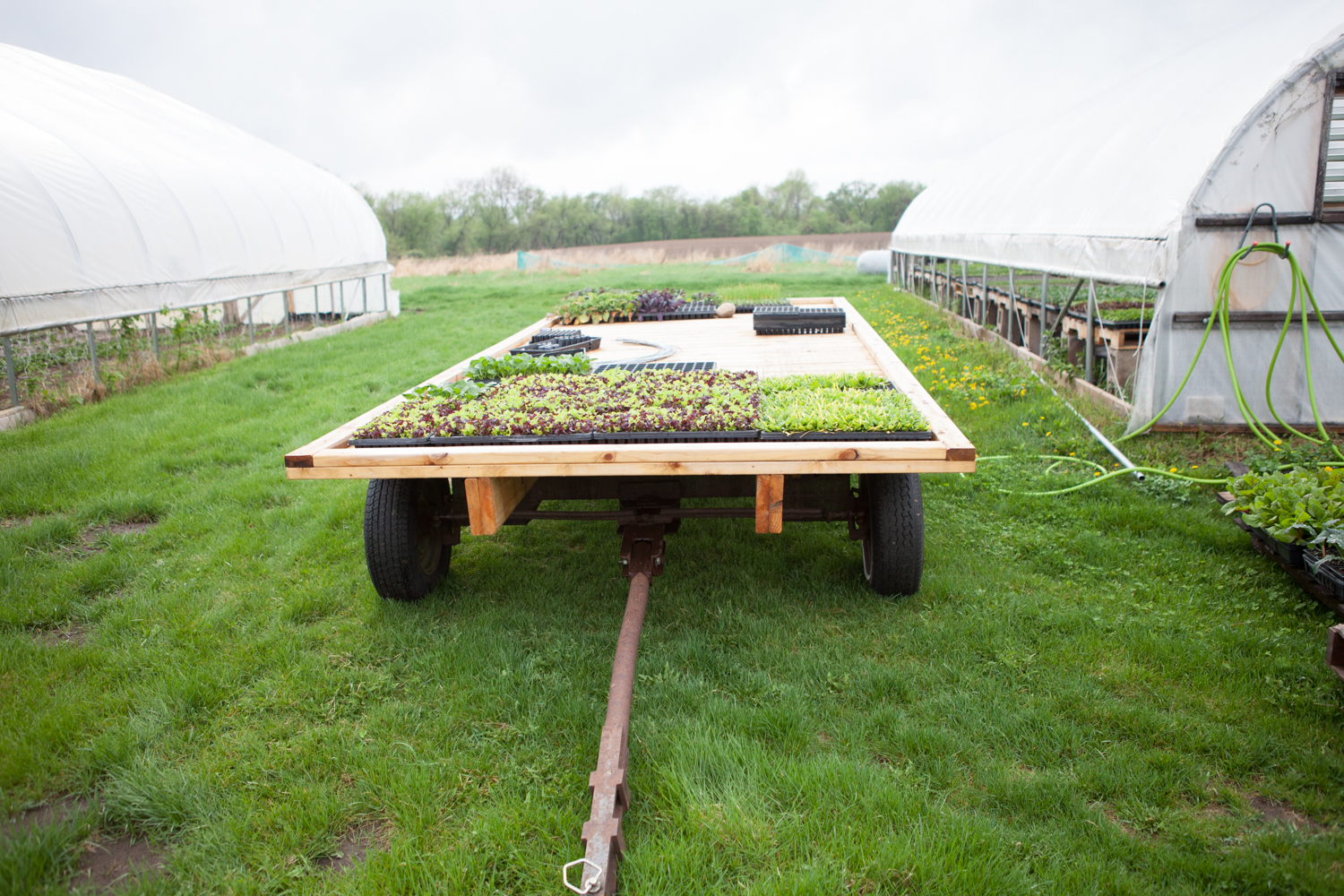 Cold-Frame-on-a-Tractor